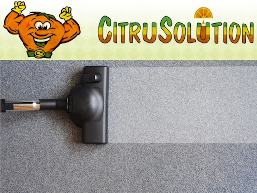 CitruSolution Carpet Cleaning Testimonial