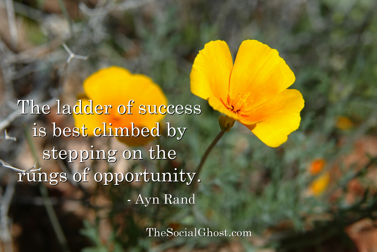 The ladder of success is best climbed by stepping on the rungs of opportunity. Ayn Rand