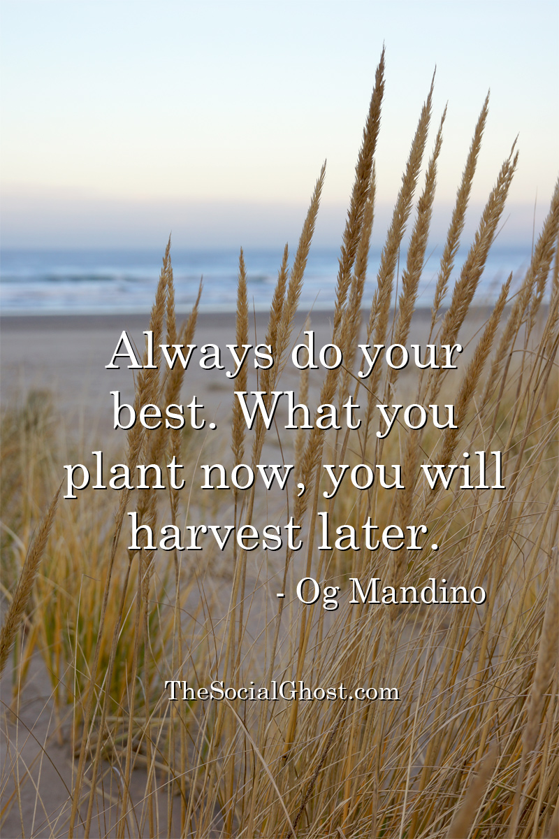 Always do your best. What you plant now, you will harvest later.Og Mandino